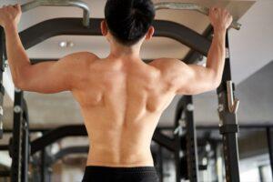 back-muscle-b