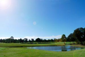 golf-course-d