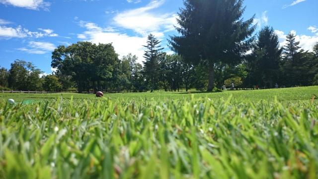 golf-course-h