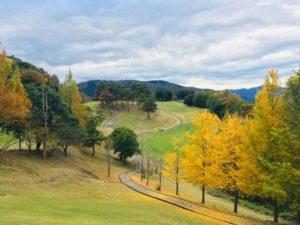 golf-course-k