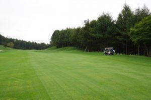 golf-course-y
