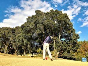 golf-shot-i