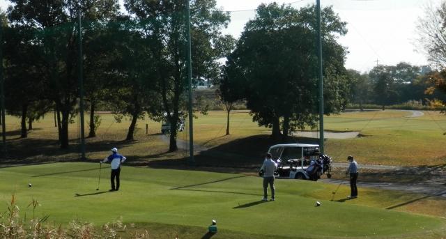 golfer-aa