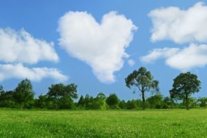 heart-cloud-a